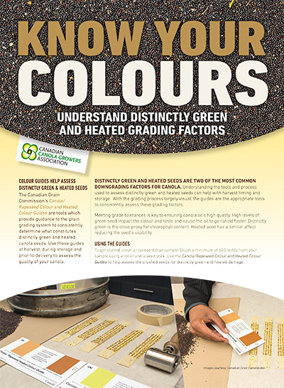 Know Your Colours - Understand Distinctly Green and Heated Grading Factors handout pdf