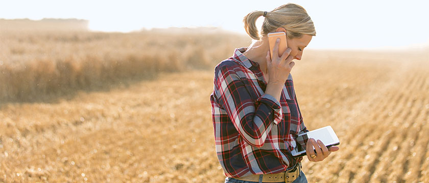 Woman reviewing cash advance online web account in farm field